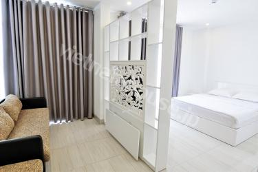 High class serviced apartment in Phu Nhuan District